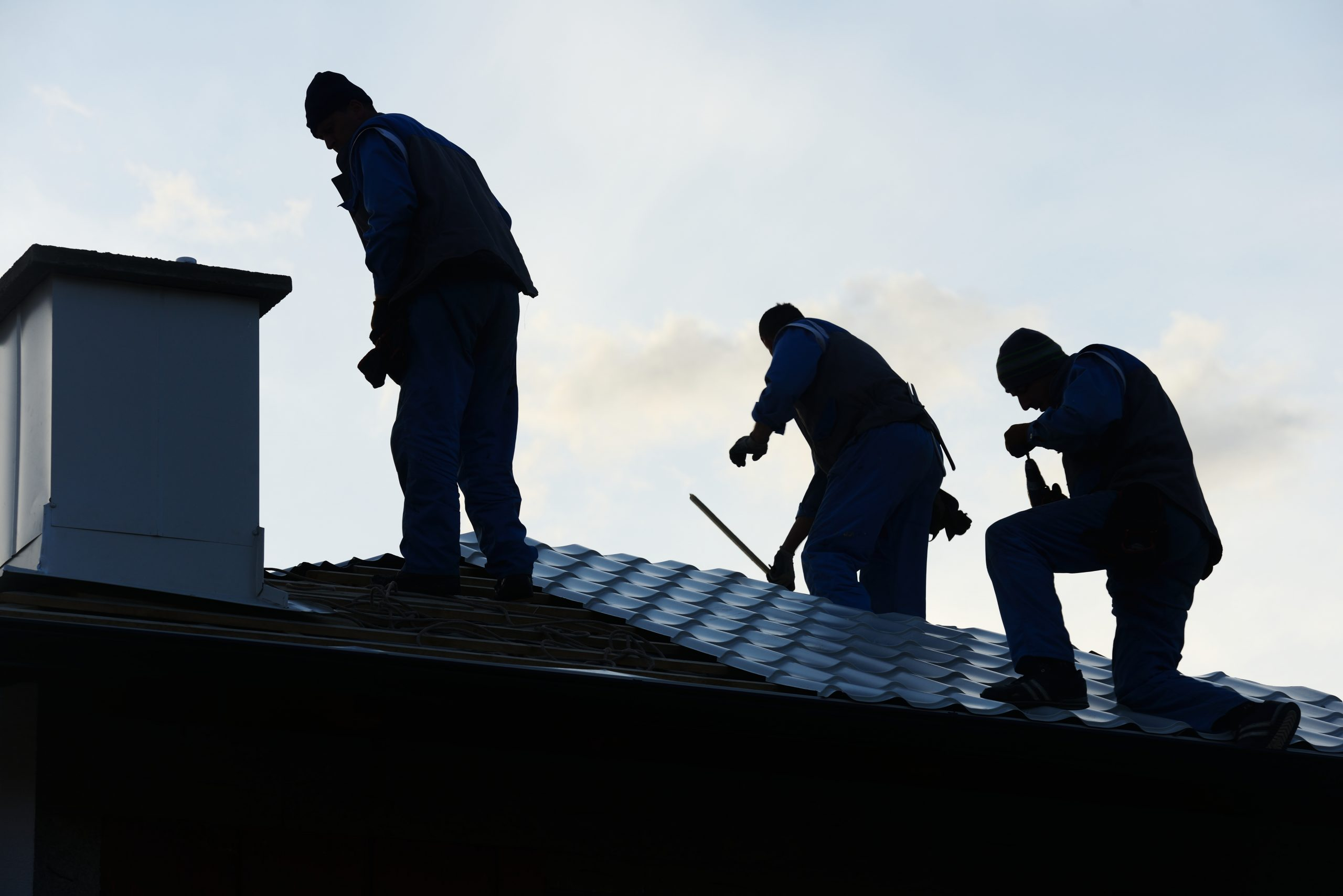 Roof cleaning: How to do a professional cleaning step by step